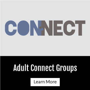 Adult Connect Groups
